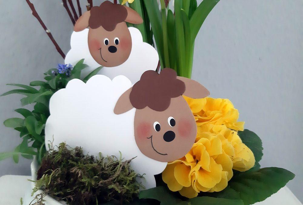Frühlingslämmer für die Blumenschale