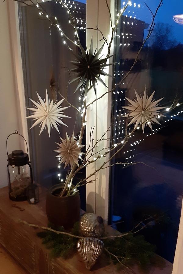 Gefaltete Sterne aus Papier am Zweig hängend.