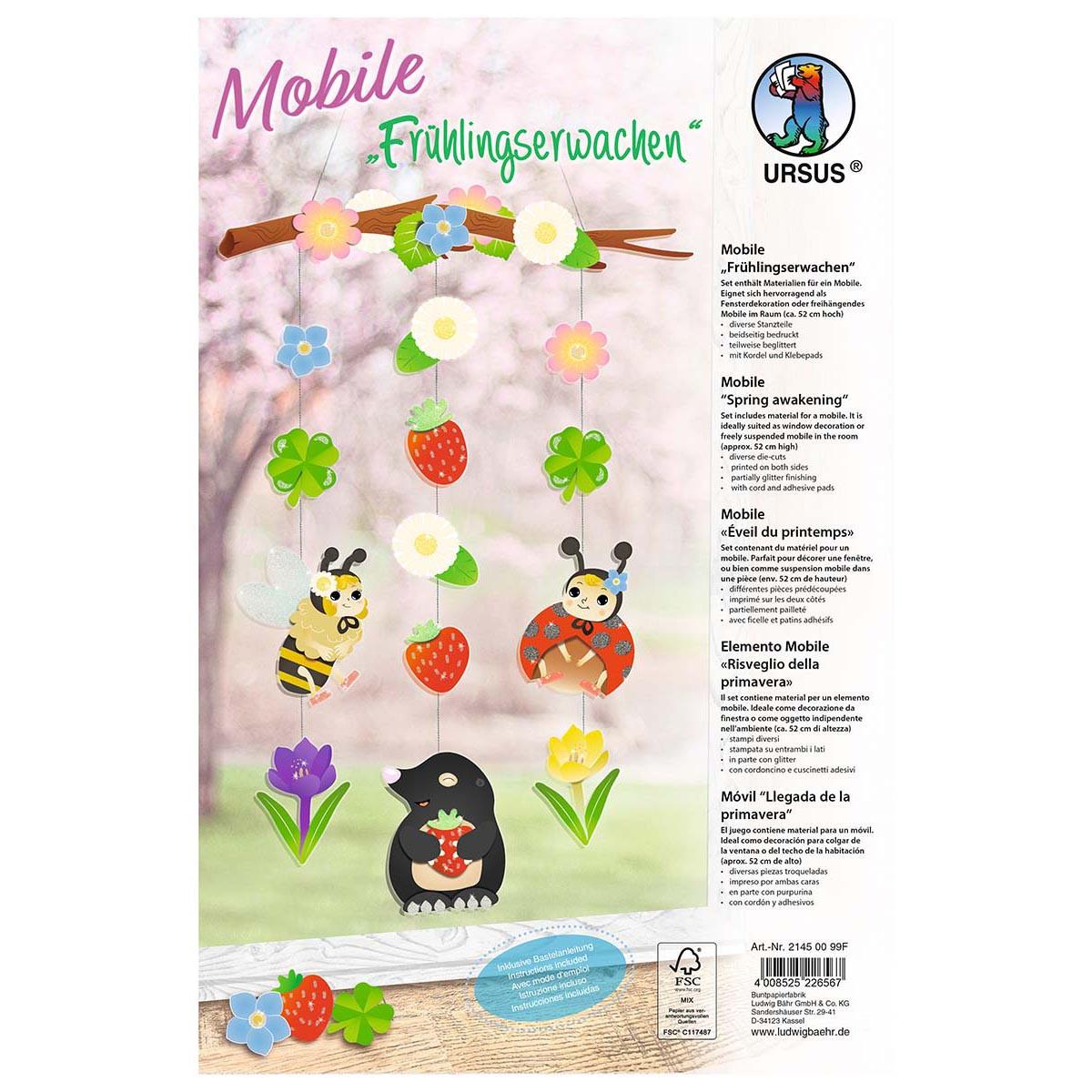 Bastelset Mobile Frühlingserwachen