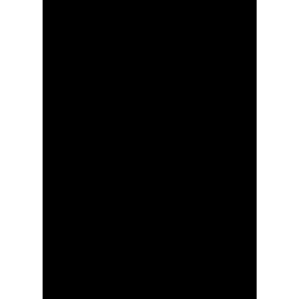 fotokarton block sonderedition din a4 10 blatt schwarz buntpapierwelt. Black Bedroom Furniture Sets. Home Design Ideas