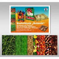 "Bastelblock ""Botanik"" 24 x 34 cm - 16 Blatt"