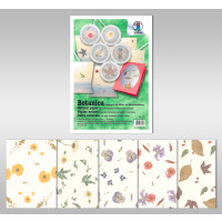Botanica 35 g/qm 50 x 70 cm - 5 Bogen