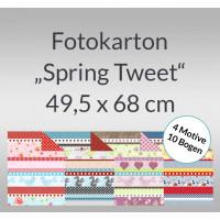 """Fotokarton """"Spring Tweet"""" 49,5 x 68 - 10 Bogen sortiert"""