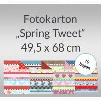 """Fotokarton """"Spring Tweet"""" 49,5 x 68 cm - 10 Bogen"""