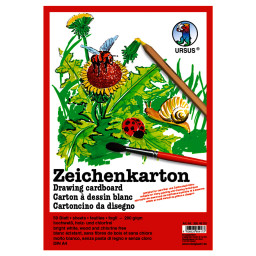Zeichenkarton 200 g/qm DIN A2 - 10 Bogen