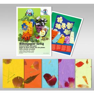 Blütenpapier farbig 80 g/qm 50 x 70 cm - 5 Bogen