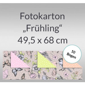 "Fotokarton ""Frühling"" 49,5 x 68 cm - 10 Bogen"