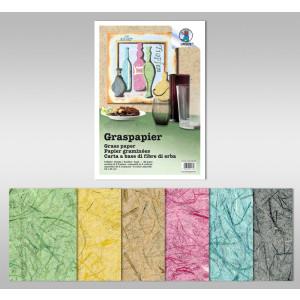 Graspapier 80 g/qm 23 x 33 cm - 6 Blatt sortiert