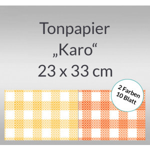 Karo-Tonzeichenpapier 130 g/qm 23 x 33 cm - 10 Blatt sortiert