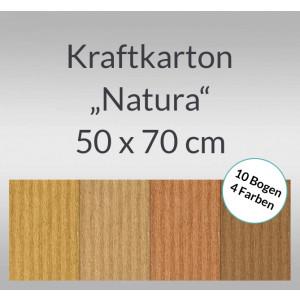 "Kraftkarton ""Natura"" 50 x 70 cm - 10 Bogen sortiert"