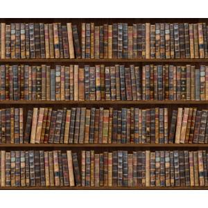 Motiv-Fotokarton 49,5 x 68 cm Bibliothek