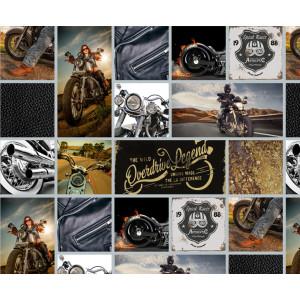 Motiv-Fotokarton 49,5 x 68 cm Bikes