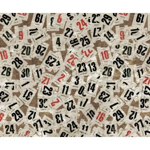 Motiv-Fotokarton 49,5 x 68 cm Kalenderblätter