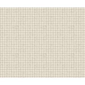 Motiv-Fotokarton 49,5 x 68 cm Raster