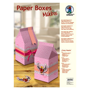 "Paper Boxes ""Crazy Hearts"""