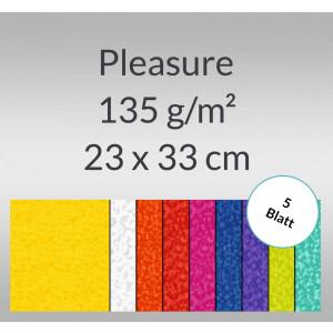 Pleasure 135 g/qm 23 x 33 cm - 5 Blatt