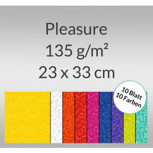 Pleasure 135 g/qm 23 x 33 cm - 9 Blatt sortiert
