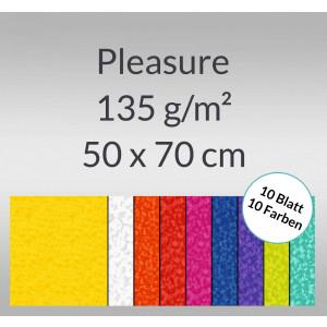 Pleasure 135 g/qm 50 x 70 cm - 10 Bogen sortiert