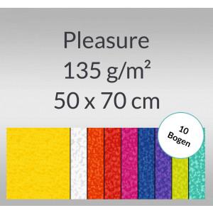 Pleasure 135 g/qm 50 x 70 cm - 10 Bogen