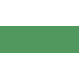 Schraubalbum 24,2 x 30,7 cm  grasgrün mit 4-Loch Bindung
