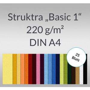 """Struktura """"Basic 1"""" DIN A4 - 25 Blatt"""